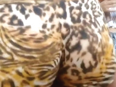 Leopard hunt on a crowded street