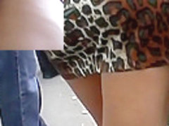 Candid upskirt on the bus