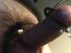 e-stim my pierced shlong