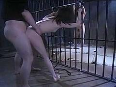 japanese girls are sex slaves