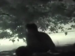 Voyeur tapes a partyslut fucking in public on a festival