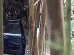 Hidden Cam - Woods 7
