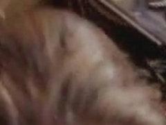 Teen begging for facial in a porno video