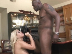 Bridgette B in Interracial Sex With Bridgette B.