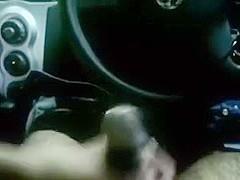 Desi College Paramour Sex in Car