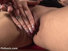 Horny brunette does a professional blowjob to her ex