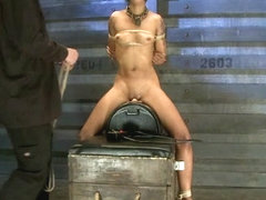 Skin Diamond-Day 4Intense Predicament Bondage  Non-Stop Orgasms Pushes ash Over the Edge - TheTrai.