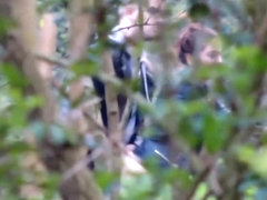 University students caught copulating in the bushes